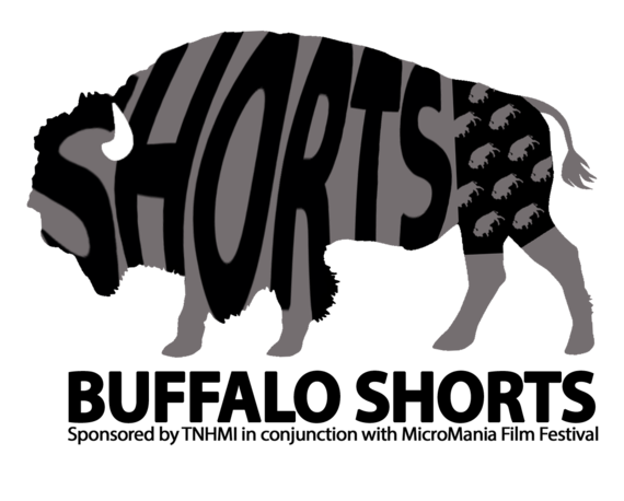 Buffalo Shorts Logo - Spark Filmmakers Collaborative